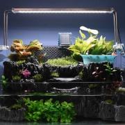 Hightech_Food_Innovation